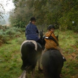 Castle Rednock Trekking